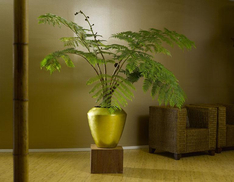 gef e und gartenm bel blumen graf n rnberg. Black Bedroom Furniture Sets. Home Design Ideas